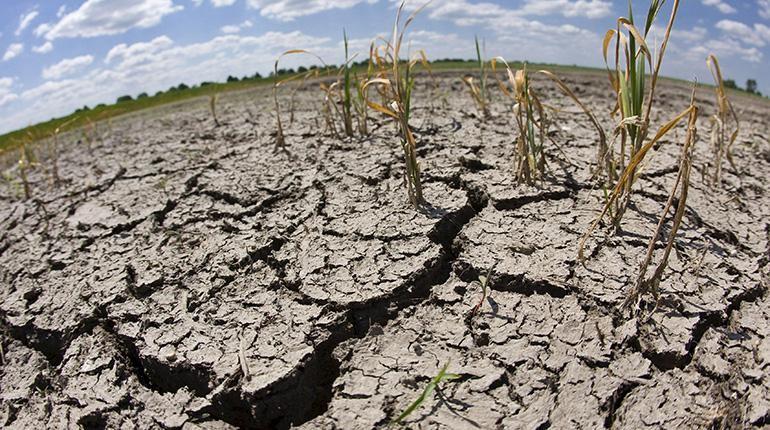 Anhaltende Trockenheit macht der Region Cochabamba zu schaffen